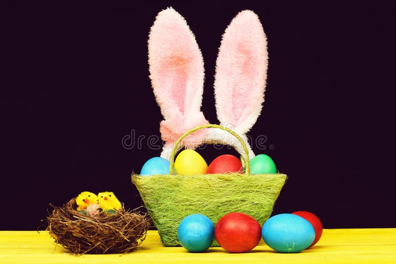 Bird nest with little toy chicks near basket with eggs stock photos