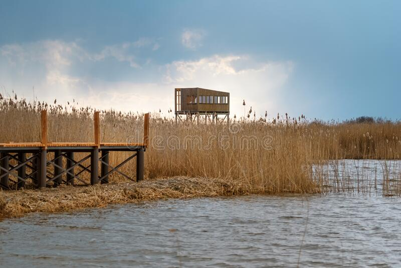 Bird observation platform by lake Zuvintas in Lithuania, birdwatching, wildlife, nature reserve. Bird observation cabin on the shore of lake Zuvintas in early stock image