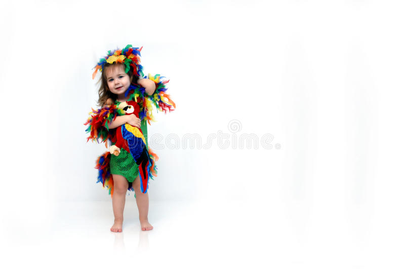 Download Bird of Paradise stock photo. Image of birdie, travel - 22685456