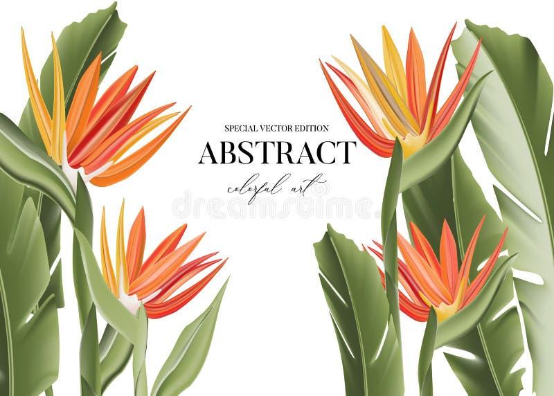 Bird of paradise graphic card design Scheda vettoriale realistica 3d moderna con immagini verticali di fiori esotici, arte botani illustrazione di stock
