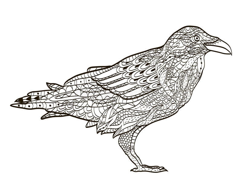 Bird raven coloring book for adults vector royalty free illustration
