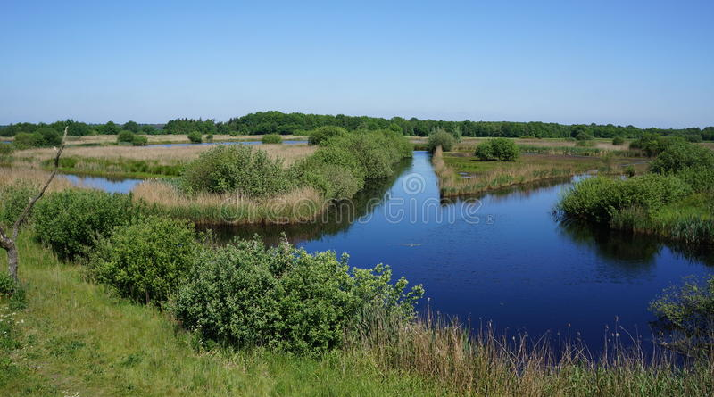 Bird reserve area. Diependal bird reserve area in the province of Drenthe in the Netherlands stock photo