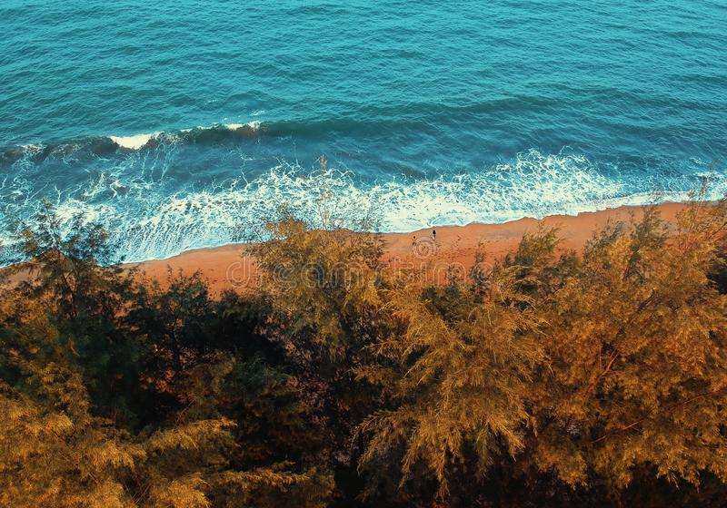 Bird's Eye View of Beach royalty free stock photo