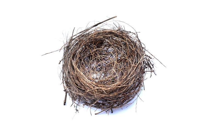 Bird's nest isolated on white background stock image