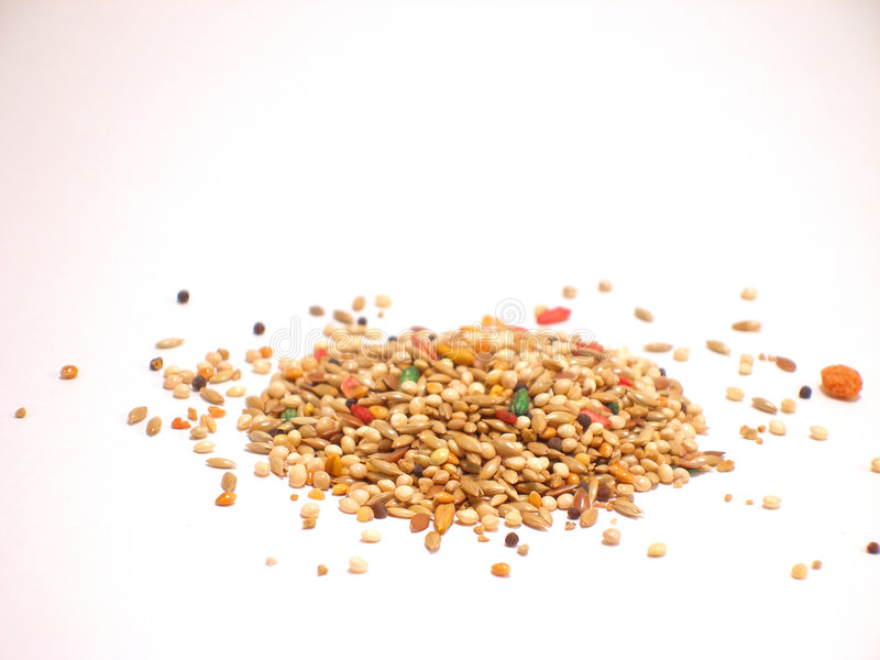 Bird Seed stock photos