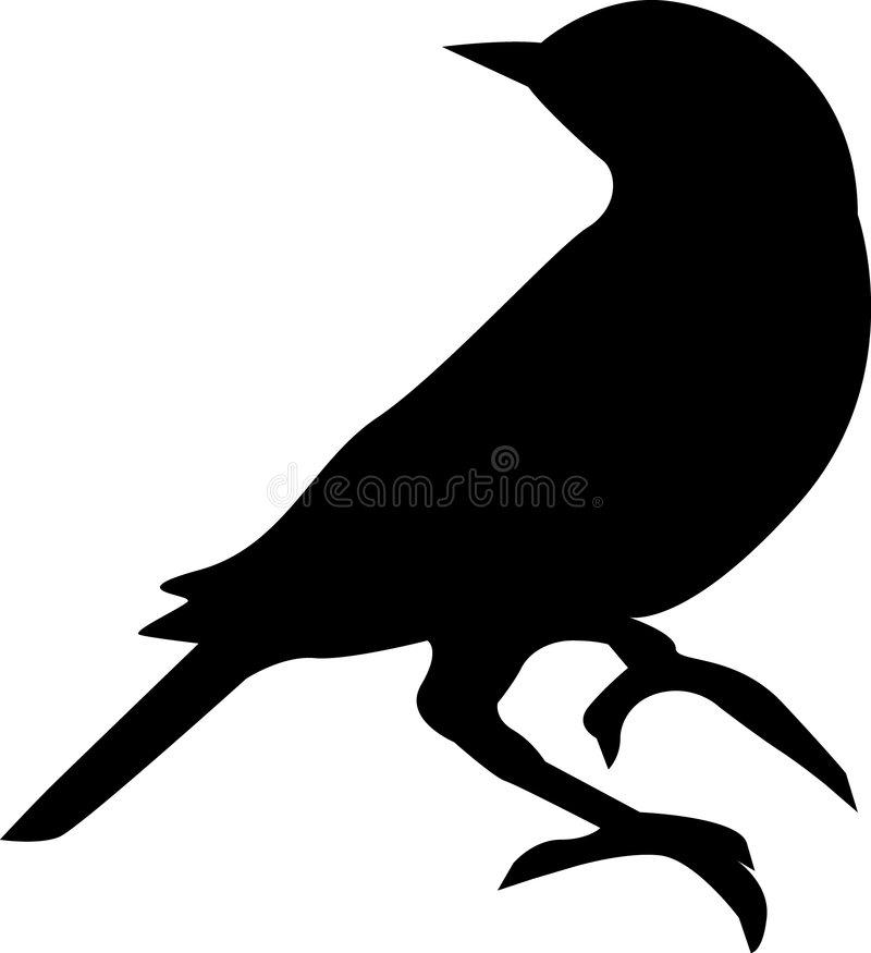 Download Bird silhouette stock vector. Image of perched, feather - 3969282