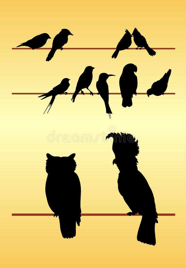 Free Bird Silhouettes Stock Photography - 40743522