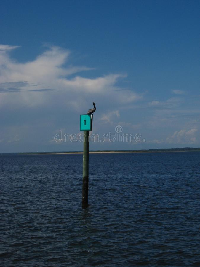Bird sits on post in ocean stock photo