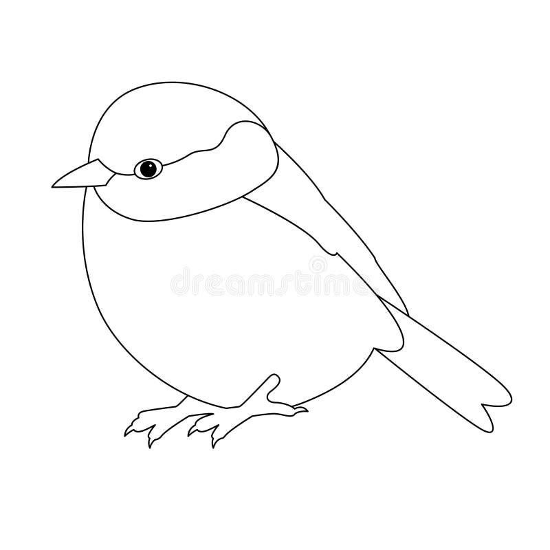 Line Drawing Robin : Bird tit vector illustration line drawing stock