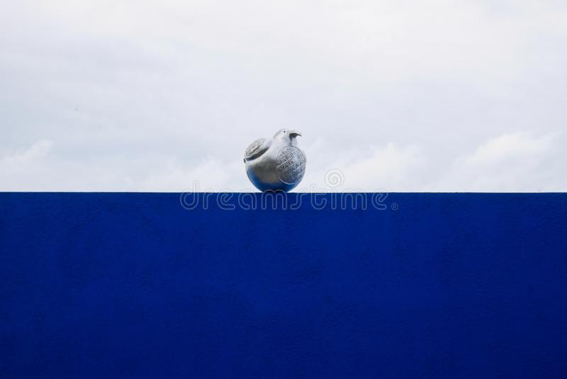 A bird on a wall royalty free stock photo