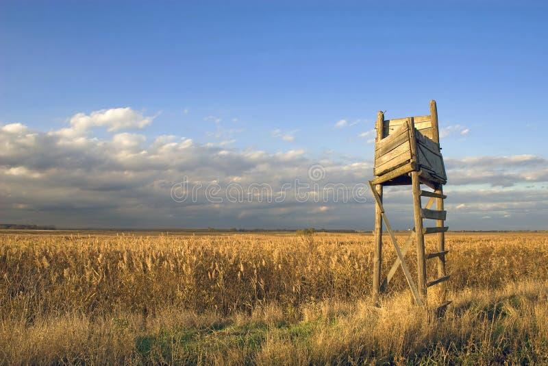 Download Bird watch tower stock image. Image of season, park, watching - 6953675