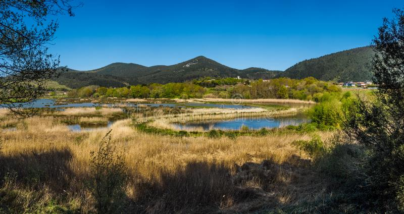 Bird watching in the Bird Center of the biosphere reserve of Urdaibai. Sunny day royalty free stock image