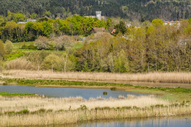 Bird watching in the Bird Center of the biosphere reserve of Urdaibai. Sunny day royalty free stock photography