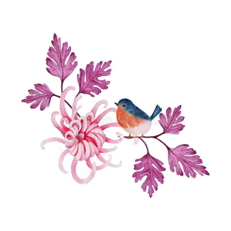 Bird and flowers watercolor isolated .Bird and flowers on white background. Watercolor hand painted illustration of Bird. vector illustration