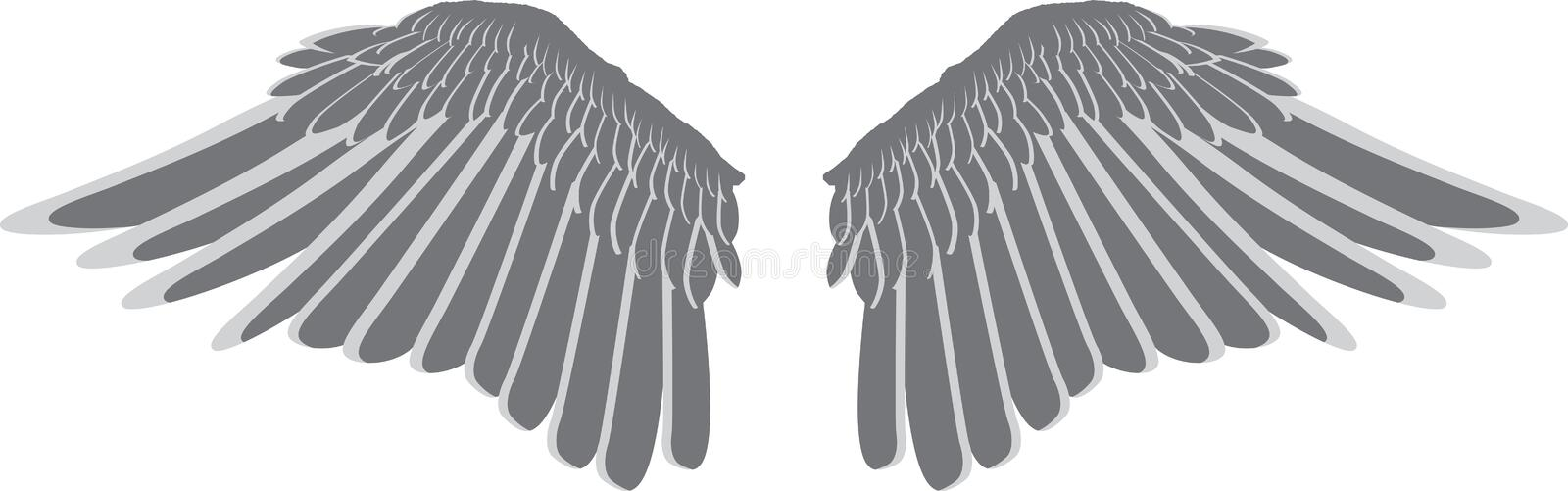 Bird wings stock illustration