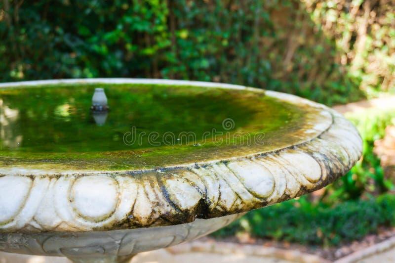 Birdbath del jardín imagen de archivo
