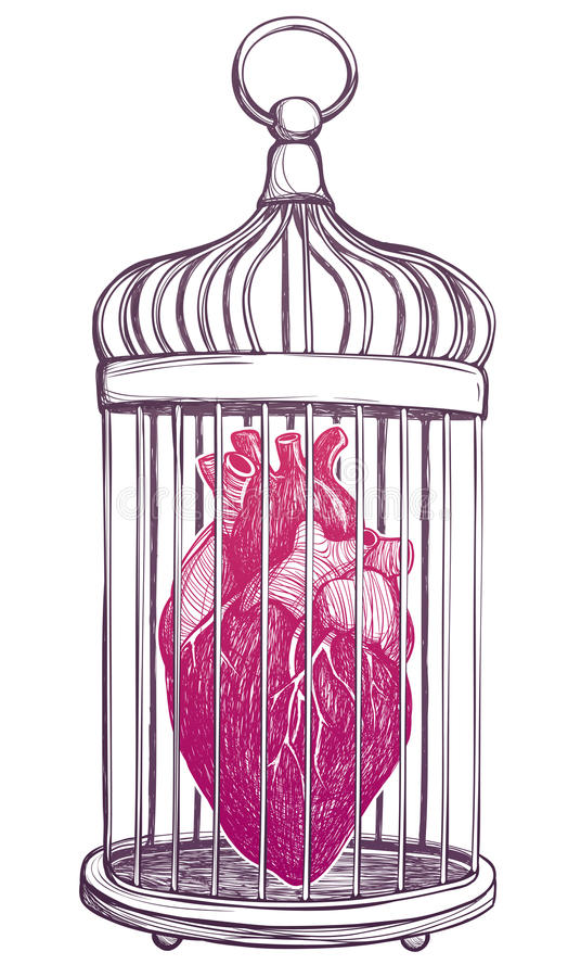 Birdcage with anatomical heart. Birdcage with anatomical heart isolated on white background. Vintage hand drawn vector illustration vector illustration