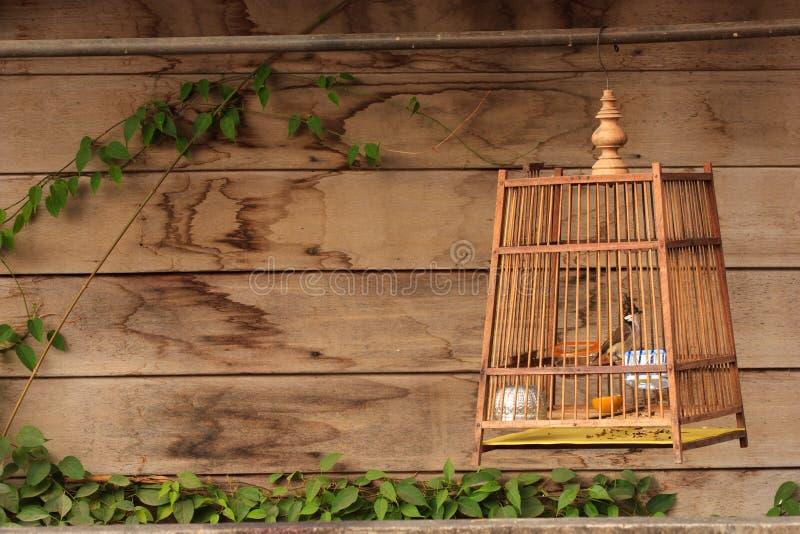 Birdcage z drewnianym tłem zdjęcia stock