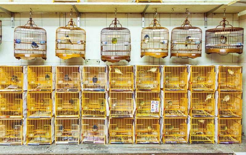 Birdcages ad Yuen Po Street Bird Garden in Hong Kong fotografie stock libere da diritti