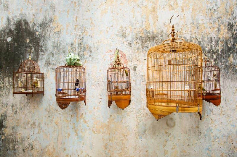 Birdcages con gli uccelli immagine stock libera da diritti