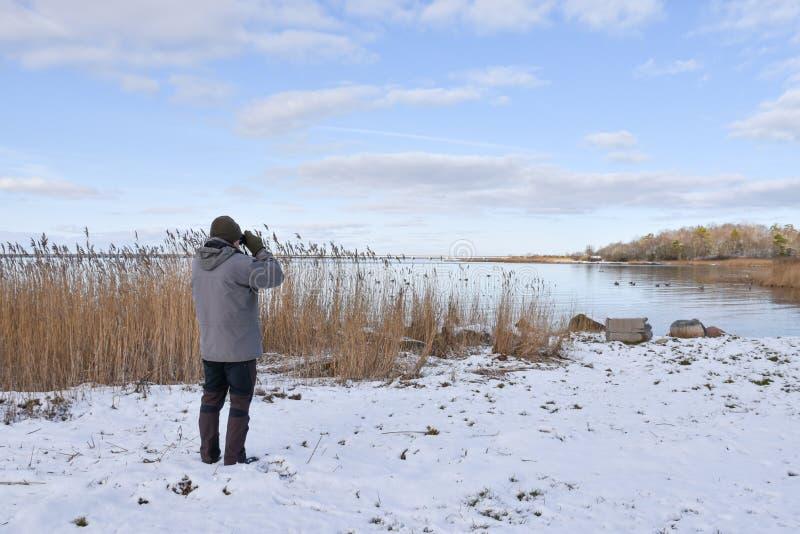 Birder por una bahía en la estación del invierno imagen de archivo libre de regalías