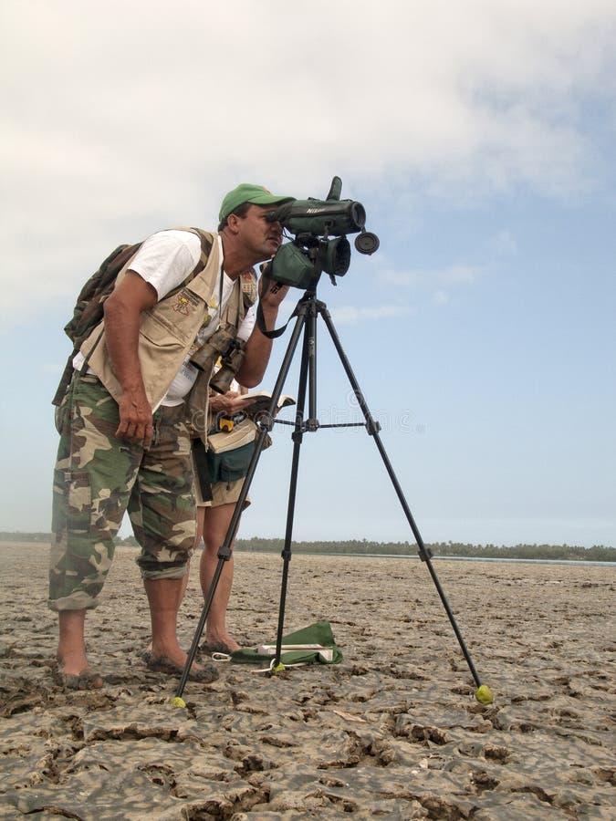 Birders die estuarine vogelleven bestuderen stock afbeeldingen