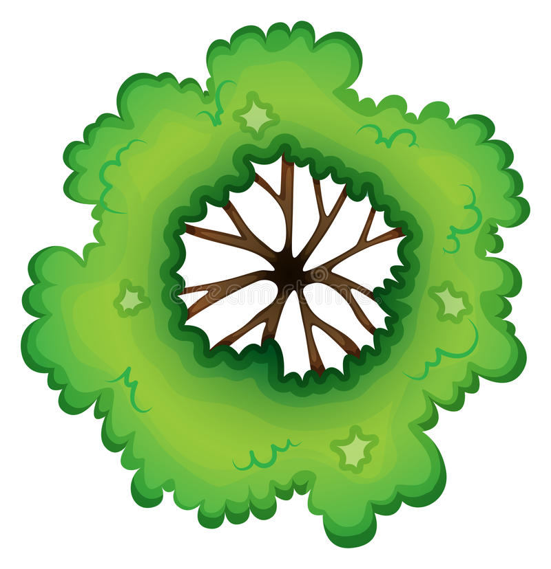 Birdeye widok zielona roślina royalty ilustracja