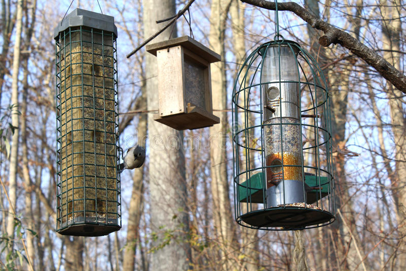 Birdfeeders stock images