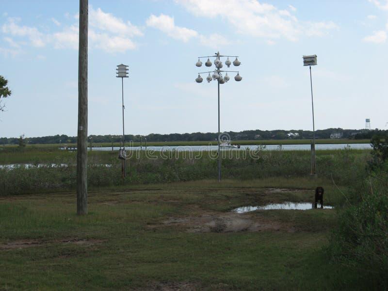 Birdfeeders près de marais et d'eau d'eau de mer en Charleston South Carolina photographie stock