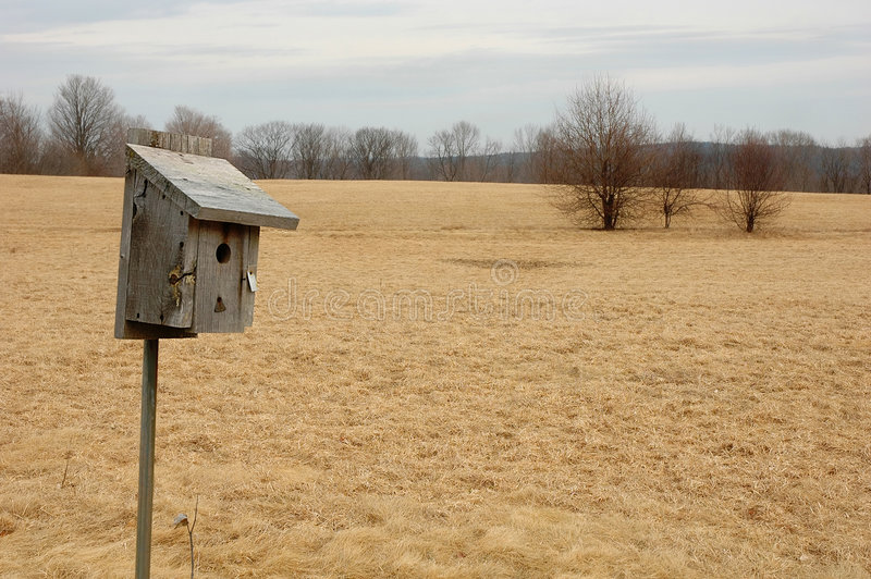 birdhouse άγρια φύση αδύτων ξύλινη στοκ φωτογραφία με δικαίωμα ελεύθερης χρήσης