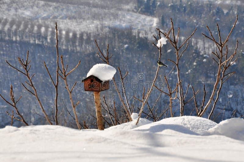 Birdhouse που καλύπτεται στο χειμερινό χιόνι στοκ εικόνα