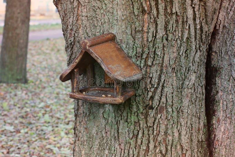 Birdhouse στο δέντρο στοκ φωτογραφίες με δικαίωμα ελεύθερης χρήσης