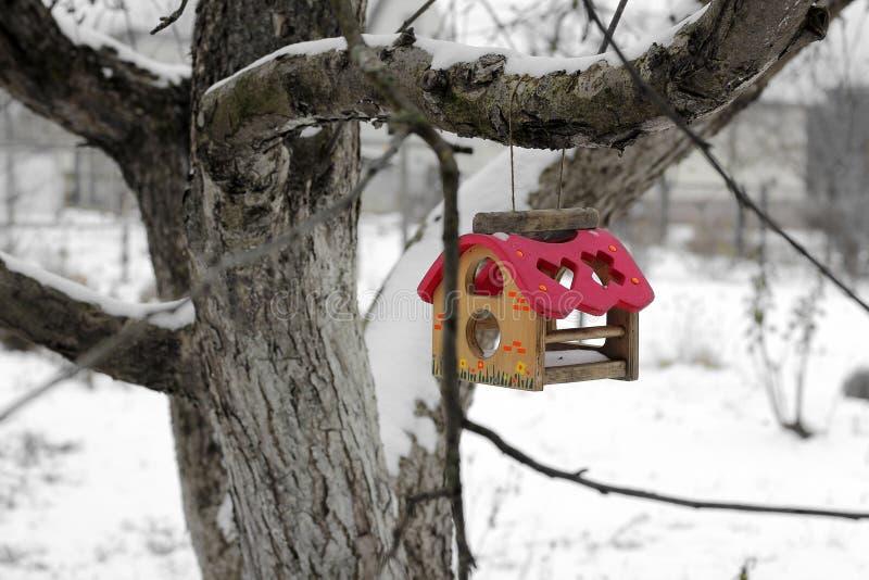 Birdhouse Τροφοδότης για τα πουλιά σε ένα δέντρο το χειμώνα στοκ φωτογραφία