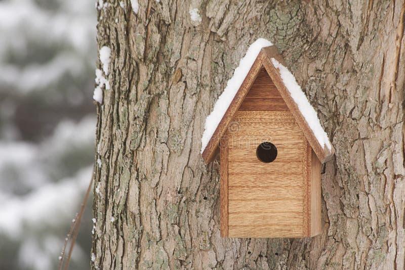birdhouse покрыл снежок стоковые изображения rf