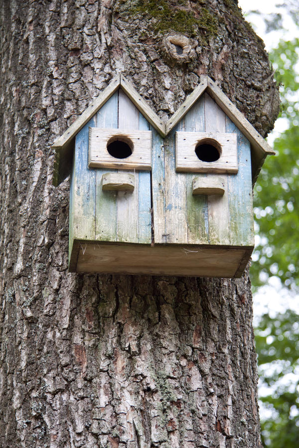 Download Birdhouse stock image. Image of nature, domicile, hibernation - 25266969