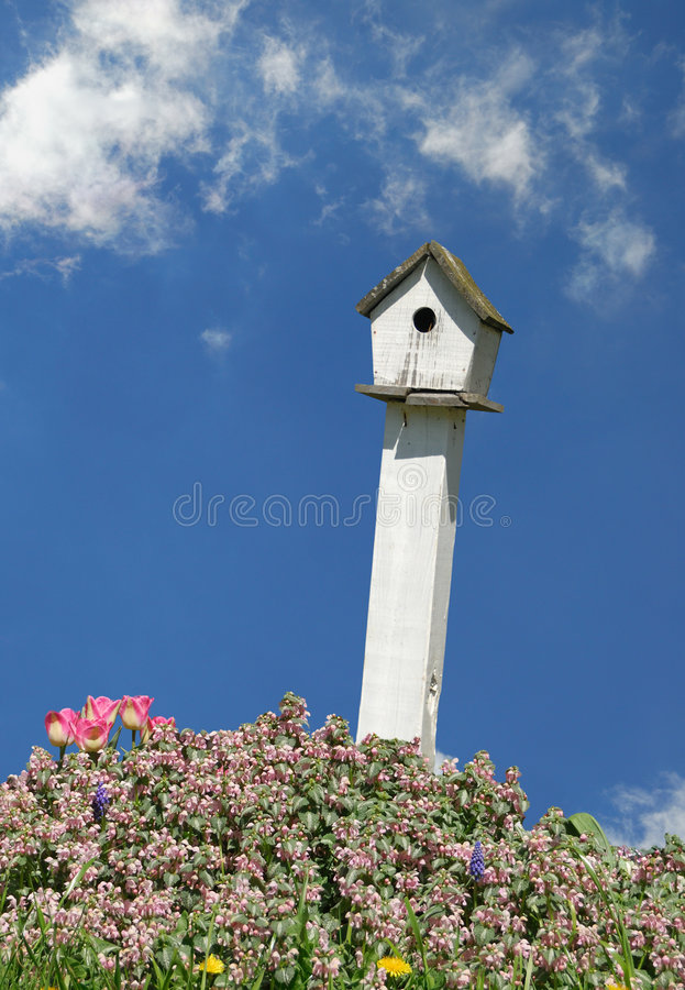 Birdhouse immagine stock libera da diritti