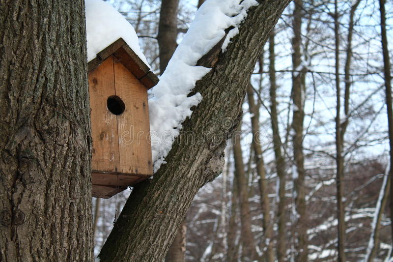 birdhouse image stock
