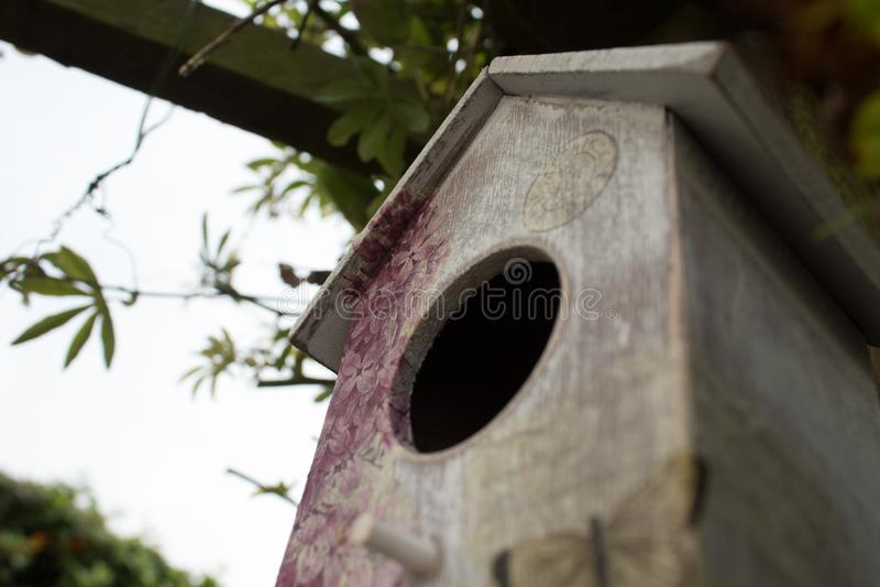 Birdhouse, Bird Feeder royalty free stock photo