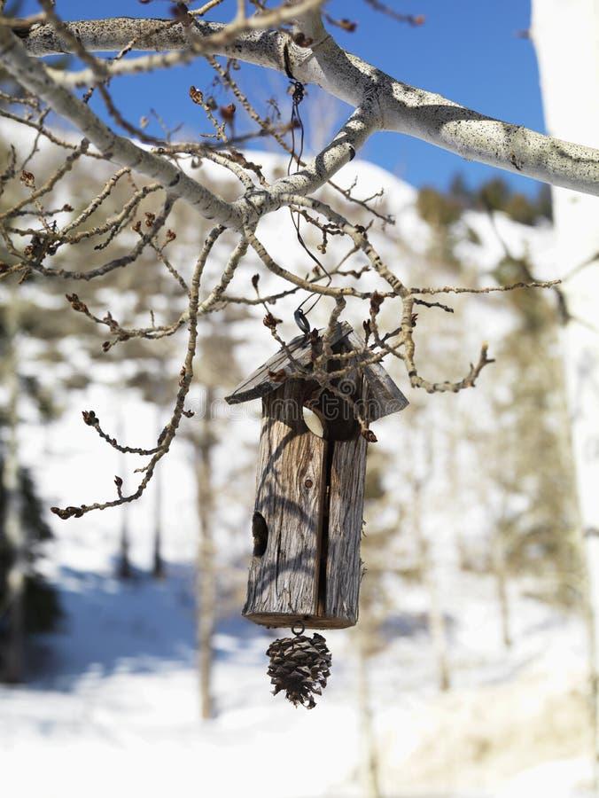 Birdhouse de madeira de suspensão imagem de stock royalty free