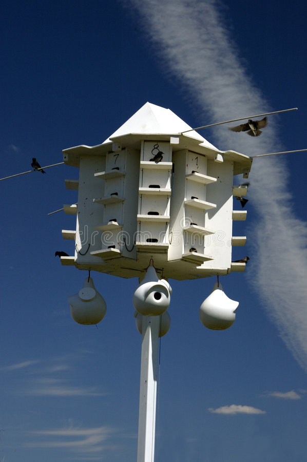 Birdhouse de Martin pourprée photos stock