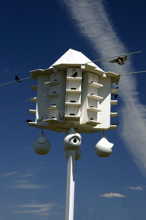 Birdhouse de Martin roxo fotos de stock