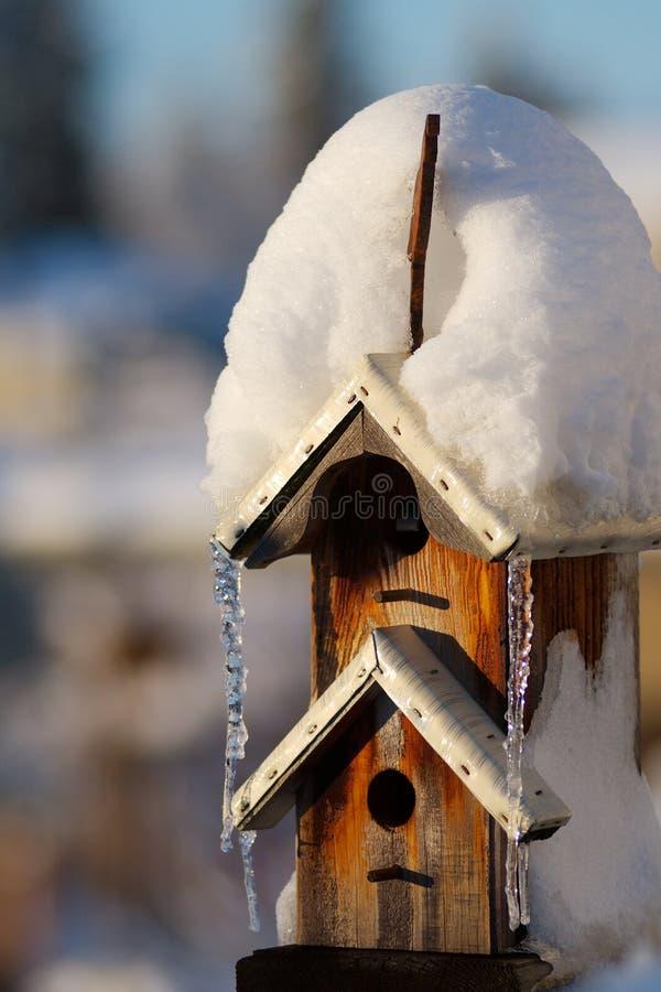 Birdhouse di inverno fotografia stock libera da diritti