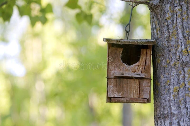 Birdhouse di legno fotografia stock
