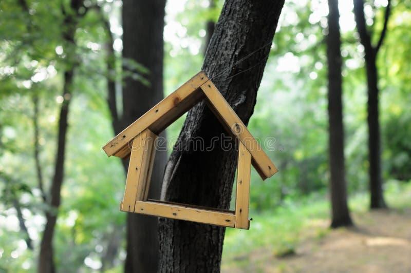 Birdhouse in foresta fotografia stock