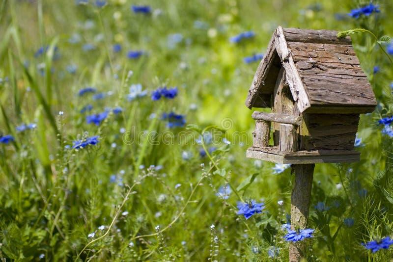 Birdhouse fra i fiori fotografia stock