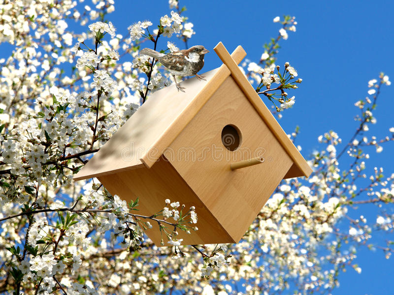 Birdhouse in garden. Birdhouse in blossoming garden with birdie royalty free stock photos