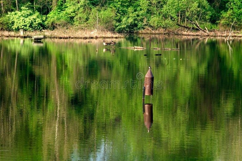 Birdhouse jeziora