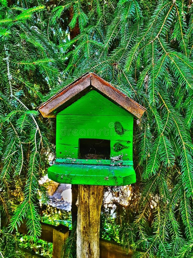 birdhouse fotografia stock