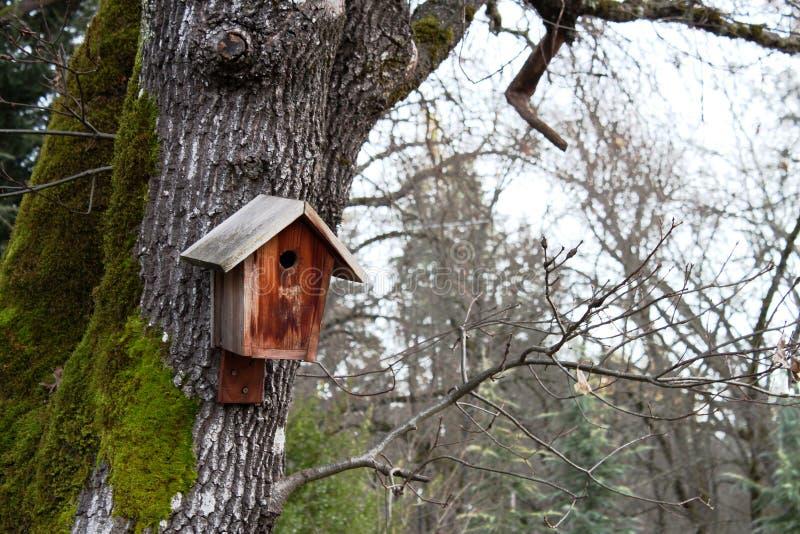 Birdhouse montato fotografia stock