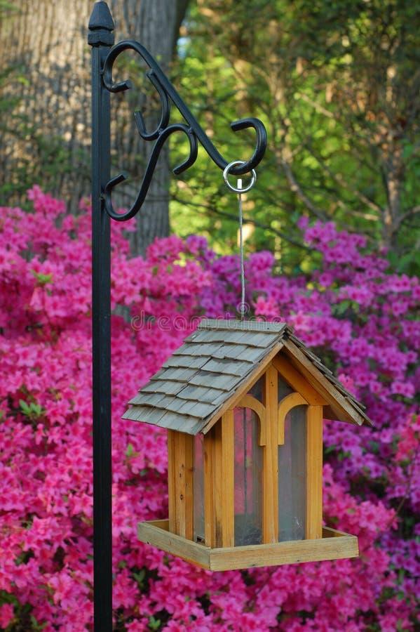 Birdhouse nella primavera fotografia stock